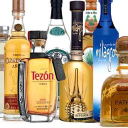 早在西元三世纪时,居住于中美洲地区的印第安文明早已发现发酵酿酒的技术,他们取用生活里面任何可以得到的糖份来源来造酒,除了他们的主要作物玉米,与当地常见的棕榈汁之外,含糖份不低又多汁的龙舌兰,也很自然而然地成为造酒的原料。  以龙舌兰汁经发酵后制造出来的Pulque酒,经常被用来作为宗教信仰用途,除了饮用之后可以帮助祭司们与神明的沟通,他们在活人祭献之前会先让牺牲者饮用Pulque,使其失去意识或至少降低反抗能力,而方便仪式的进行。                  龙舌兰酒是墨西哥的特产,被称为墨西哥的灵