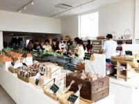 """每次日本旅游的最后一天都变成采买团,在各大伴手礼采买中心度过吗?MATCHA小编这次就要教你去北海道观光回国前三十分钟,如何在seicomart等北海道当地便利商店搞定伴手礼。每一样都是味蕾保证,绝对好吃必买,一定会让你成为朋友圈中道地的""""日本通""""哦。"""